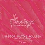 Pula by Gregor Salto