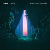 Forgot How To Dream (feat. K.Flay) de Ekali