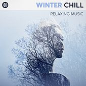 Winter Chill: Relaxing Music de Various Artists