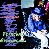 Forseen Evergreen by The Sound Foxes Experiment