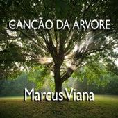 Canção da Arvore de Marcus Viana