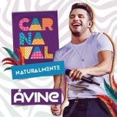 Carnaval Naturalmente by Avine Vinny