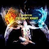 Psylient night by Dj tomsten