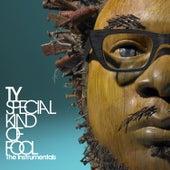 Special Kind of Fool - The Instrumentals von TY