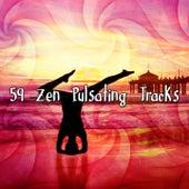 59 Zen Pulsating Tracks von Massage Therapy Music