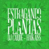 Estragando Plantas von DJ Caique