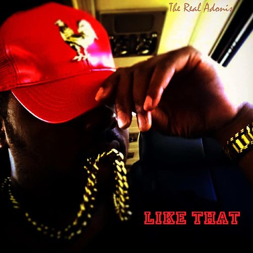 Like That by The Real Adonis