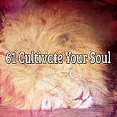 61 Cultivate Your Soul by White Noise for Babies