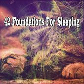42 Foundations For Sleeping by Ocean Sounds Collection (1)