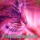 58 Strength Through Natural Bed Rest de Sleepicious