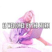 22 Welcomed By The Storm de Thunderstorm Sleep