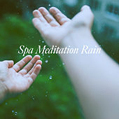 Spa Meditation Rain de Various Artists
