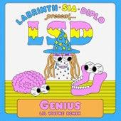Genius (Lil Wayne Remix) by LSD (Sia x Diplo x Labrinth)