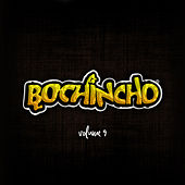 Bochincho, Vol. 9 (Ao Vivo) von Grupo Bochincho
