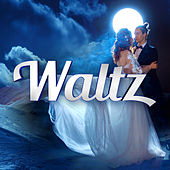 Waltz von Various Artists