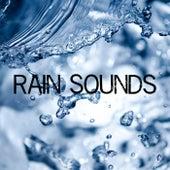 Rain Sounds de Various Artists