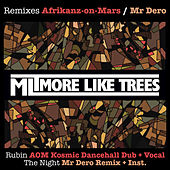 Rubin / The Night - Remixes by More Like Trees
