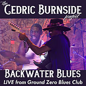 Backwater Blues (Live) by Cedric Burnside Project