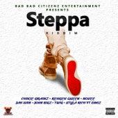 Steppa Riddim von Various