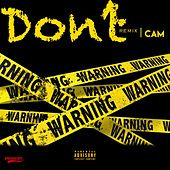 Don't (Remix) by Cam