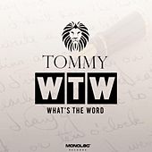 What's the Word (Radio Edit) de Tommy