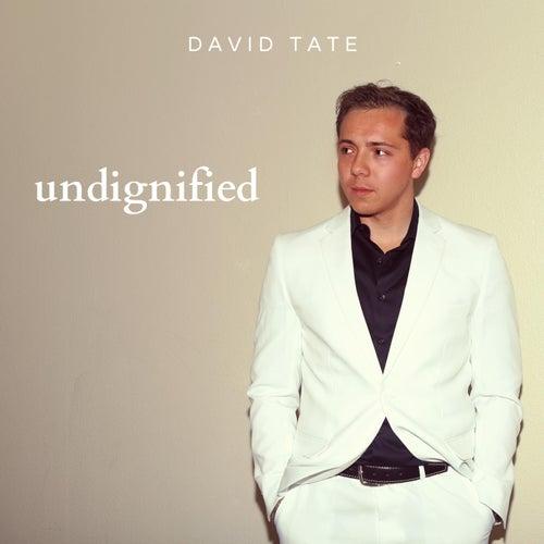 Undignified by David Tate