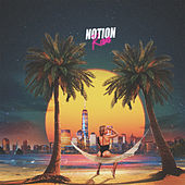 Roses by Notion