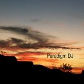 Paradigm DJ by Antonio TwizShiz Edward