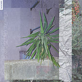 Diskotopia F/W 2018-2019 F.C. von Various Artists