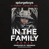 In the Family (Remix) de Splurgeboys