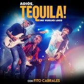 Me Vuelvo Loco (En Directo En El WiZink Center / Madrid / 2018) de Tequila