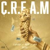 C.R.E.A.M by Landy
