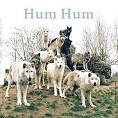 Blueberries by Hum Hum