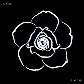 Bloom by Malo