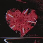 Love Love Love von ViVii