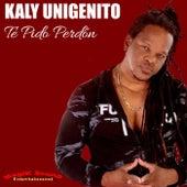 Te Pido Perdón by Kaly Unigenito