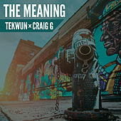 The Meaning de DJ Tek-Wun