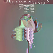 True Love Will Find You in the End by Tape Deck Mountain