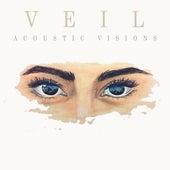 Acoustic Visions de Veil