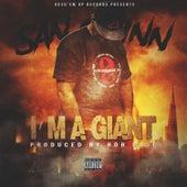 I'm A Giant by San Quinn