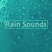 Rain Sounds by Sleep Sound Library
