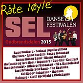 Dansefestivalen på Sel 2015 de Various Artists