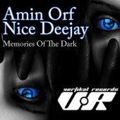 Memories of the Dark de Amin Orf