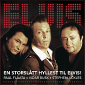 En Storslått Hyllest til Elvis de The FAB 3