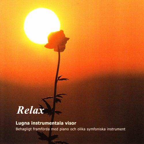 Relax - Lugna Instrumentala Visor by Tomas Blank