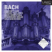 Bach Concertos and Chorale Preludes (Silbermann Organ Arlesheim Cathedral) de Kåre Nordstoga