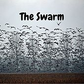 The Swarm de King-J