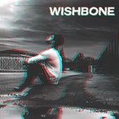 Wishbone de Damon Jacs