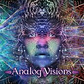 Analog Visions de Various Artists