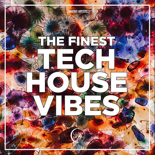 The Finest Tech House Vibes von Various